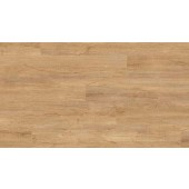 0796 Swiss Oak Golden / široký formát / na lepenie