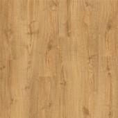AVMP40088 Dub jesenný medový