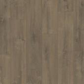 BAGP40160 Zamatový dub hnedý