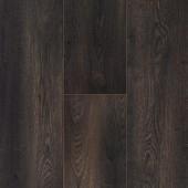 60580 Dub Spálený-Čierny