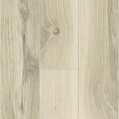 60043 Cedar Orech - úzke lamely