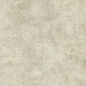 60112 Ivory Terra