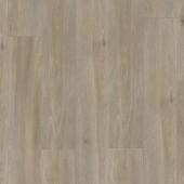 BACL40053 Dub hodvábny sivohnedý