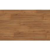 EPD012 Orech hnedý