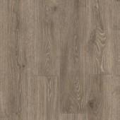 MJ3548 Lesný dub hnedý